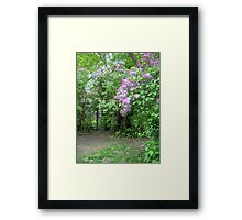 Lilacs Over the Gate Framed Print