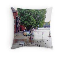 Flood Throw Pillow