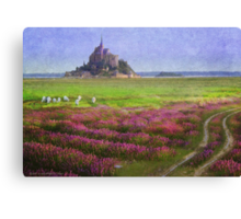 mont st. michel flowers and grazing sheep Canvas Print