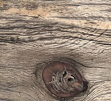Old Weathered Wood with Knot by doorfrontphotos