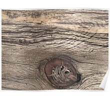 Old Weathered Wood with Knot Poster