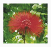 Red Puffy Firework Flower Kids Clothes