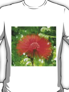 Red Puffy Firework Flower T-Shirt