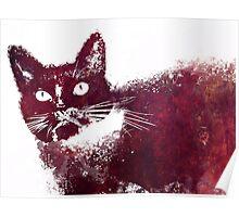 Cat Benny Poster
