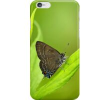 Banded Hairstreak Butterfly on Leaf iPhone Case/Skin