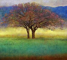 spring lone tree by R Christopher  Vest