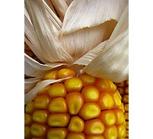 CORN! Photographic Print