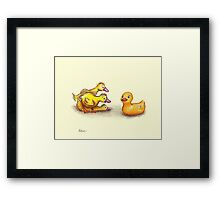 Little ducklings curious friend Framed Print