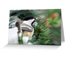 Winter Chickadee Art Print Greeting Card