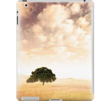 Old Landscape iPad Case/Skin