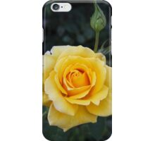 ♫Yellow Rose of Texas♫ iPhone Case/Skin