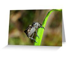 Evil Weevil Greeting Card