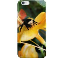 Honeybee and Tiger Lily  iPhone Case/Skin