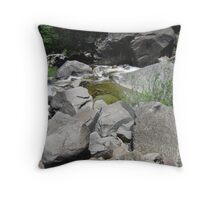 Rocks and Stream Throw Pillow