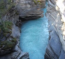 Athabasca Falls by Vickie Emms