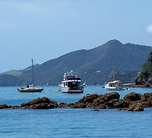 A quiet place to rest.........!   Bay of Islands. by Roy  Massicks