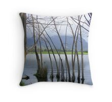 peeking at Mt Roland, from Paradise, Tasmania Throw Pillow