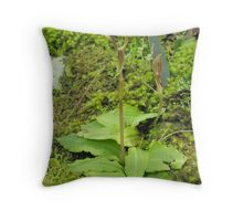 Little Orchid Throw Pillow