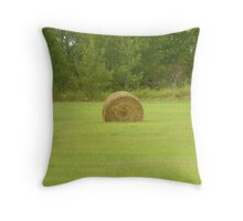 just wanted to say hay. Throw Pillow
