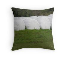Anyone hungry for smores. Throw Pillow