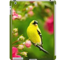 Garden Goldfinch iPad Case/Skin