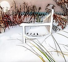 A Throne of White by Susan Werby