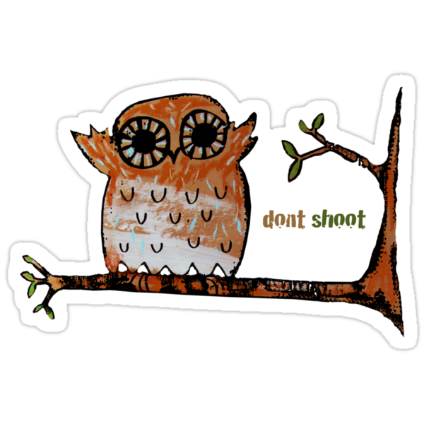 Don't Shoot Owl by © Karin Taylor