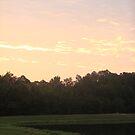 Morning Light by Jessie Harris
