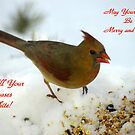 May All Your Christmases Be White! by Paul Gitto