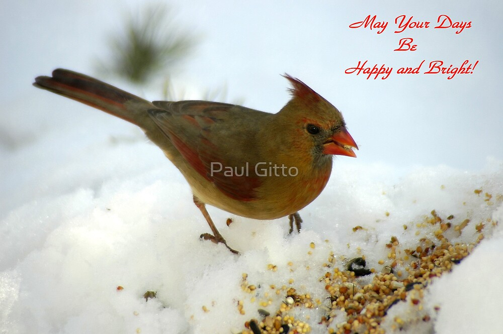 May Your Days Be Happy and Bright! by Paul Gitto