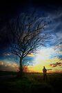 Crazy Sunset by Nigel Bangert