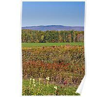 Fall in New Hampshire Poster