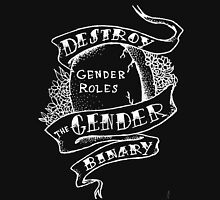 destroy the gender binary inverse Womens Fitted T-Shirt