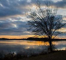 Peaceful Evening by ctellis156