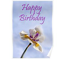 Happy Birthday Card - Iris with blue sky background Poster