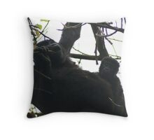 Mother and babe Throw Pillow