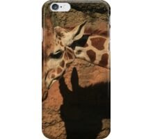 The Color of Shadows iPhone Case/Skin