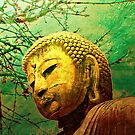 Buddha and Spring Blossoms by Helen Chierego