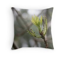 it is spring! Throw Pillow
