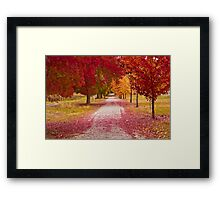 Bright Red Path  Framed Print