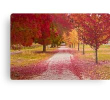 Bright Red Path  Metal Print