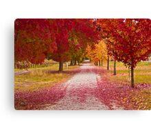 Bright Red Path  Canvas Print
