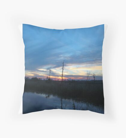 Blue Sky Smilin' at Me (OK so it was sundown) Throw Pillow