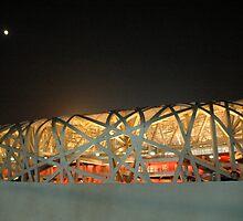 Bird's Nest Stadium by Steven Towell