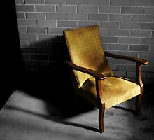 Chair by Night, Bed by Day by Stephen Mitchell