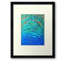 Peacock's feathers... Framed Print