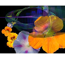 Floral fantasy Photographic Print