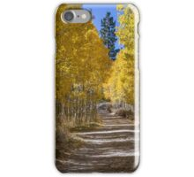 Autumn in the Eastern Sierra iPhone Case/Skin