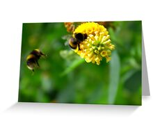 Bee #4 Greeting Card