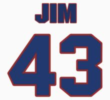 National football player Jim Norton jersey 43 by imsport